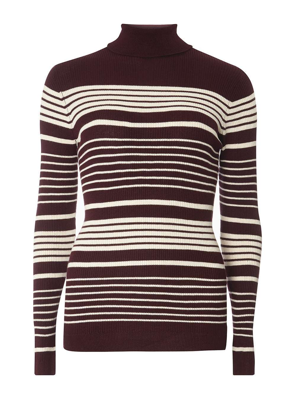 Womens Aubergine Stripe Roll Neck Jumper Purple - pattern: striped; neckline: roll neck; style: standard; secondary colour: white; predominant colour: aubergine; occasions: casual; length: standard; fit: slim fit; sleeve length: long sleeve; sleeve style: standard; texture group: knits/crochet; pattern type: knitted - fine stitch; fibres: viscose/rayon - mix; multicoloured: multicoloured; season: a/w 2016; wardrobe: highlight