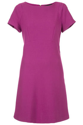 Tall Curve Seam Shift Dress - style: shift; length: mid thigh; neckline: round neck; sleeve style: capped; pattern: plain; waist detail: fitted waist; predominant colour: hot pink; occasions: evening; fit: soft a-line; fibres: polyester/polyamide - mix; sleeve length: short sleeve; pattern type: fabric; texture group: jersey - stretchy/drapey; season: s/s 2013