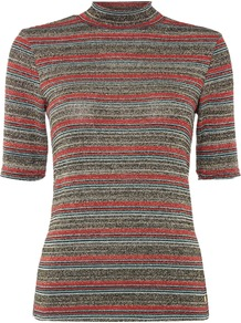 Metallic Stripe Roll Neck, Multi Coloured - pattern: horizontal stripes; neckline: high neck; secondary colour: true red; predominant colour: charcoal; occasions: evening, creative work; length: standard; style: top; fibres: viscose/rayon - stretch; fit: tight; sleeve length: short sleeve; sleeve style: standard; texture group: knits/crochet; pattern type: knitted - fine stitch; pattern size: standard; multicoloured: multicoloured; season: s/s 2016; wardrobe: highlight