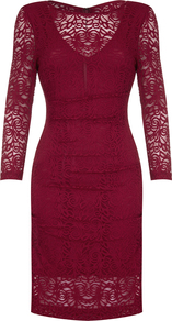 Illusion Lace Dress - style: shift; fit: tailored/fitted; predominant colour: hot pink; occasions: evening; length: on the knee; fibres: polyester/polyamide - 100%; neckline: crew; sleeve length: 3/4 length; sleeve style: standard; texture group: lace; pattern type: fabric; pattern size: standard; pattern: patterned/print; season: a/w 2016; wardrobe: event