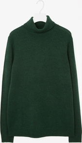 Cashmere Roll Neck Jumper - sleeve style: dolman/batwing; pattern: plain; neckline: wide roll/funnel neck; length: below the bottom; style: standard; predominant colour: dark green; occasions: casual, creative work; fit: standard fit; fibres: cashmere - 100%; sleeve length: long sleeve; texture group: knits/crochet; pattern type: knitted - fine stitch; season: a/w 2016; wardrobe: highlight