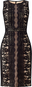 Plus Size Embroidered Directional Stripe Lace Dress, Black/Bisque - style: shift; fit: tailored/fitted; sleeve style: sleeveless; predominant colour: black; occasions: evening; length: on the knee; fibres: nylon - mix; neckline: crew; sleeve length: sleeveless; texture group: lace; pattern type: fabric; pattern: patterned/print; embellishment: embroidered; season: a/w 2016; wardrobe: event; embellishment location: pattern